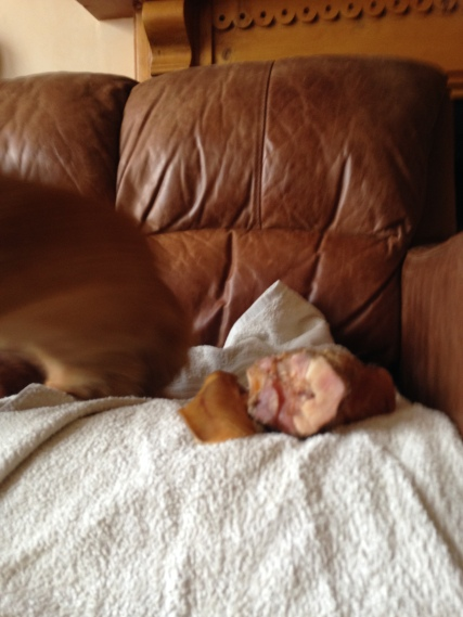 Thumbelina with bone 1
