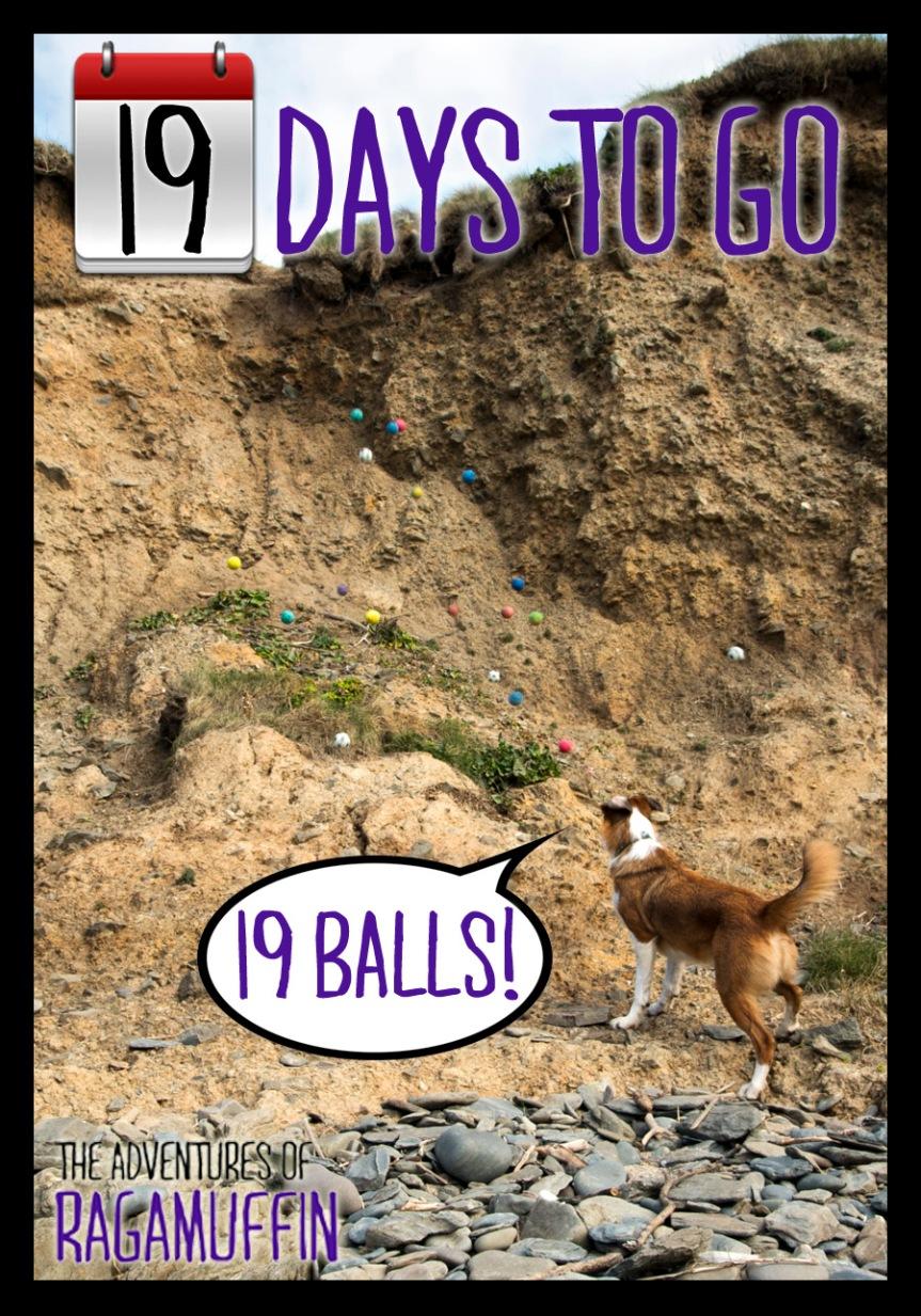 19 days-resize2