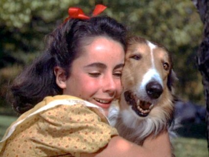 Lassie and Liz