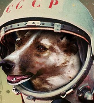 Space Dog 2