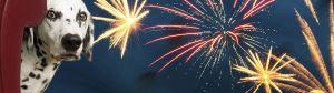remember-remember-fireworks-aren-t-just-in-november_feliway_banner_image_home